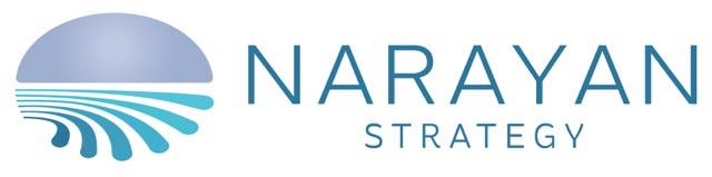 narayan-strategy-logo